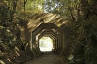 Hachikaku Tunnel