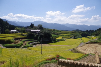 Terraced Rice Fields in Kozaki
