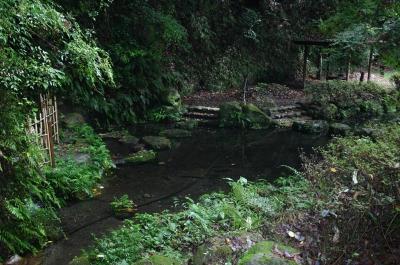 中蓮寺水源公園